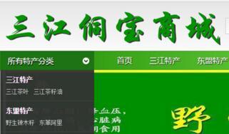 三江侗宝商城网站建设开发